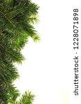 christmas tree branch on white... | Shutterstock . vector #1228071898