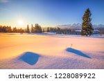 winter natural background.... | Shutterstock . vector #1228089922