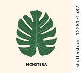 monstera tropical jungle plant... | Shutterstock .eps vector #1228171582