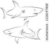 black line sharks on white... | Shutterstock .eps vector #1228197808