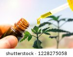 hand holding bottle of cannabis ... | Shutterstock . vector #1228275058