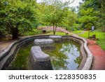image of water pond at pong nam ... | Shutterstock . vector #1228350835