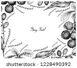 berry fruits  illustration...   Shutterstock .eps vector #1228490392