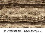 light and dark striped skarn... | Shutterstock . vector #1228509112