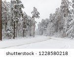 snowfall in the countryside... | Shutterstock . vector #1228580218