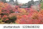 fall colour at  tofukuji temple ... | Shutterstock . vector #1228638232
