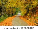 Beautiful Autumn Road In The...