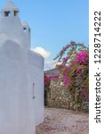 bougainvillaea  driveway .... | Shutterstock . vector #1228714222
