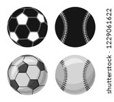 isolated object of sport and... | Shutterstock . vector #1229061622