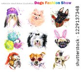 Heads Dog With Fashion...