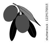 nature olive illustration | Shutterstock .eps vector #1229170015