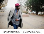 stylish african american man... | Shutterstock . vector #1229263738