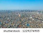aerial view of tokyo city... | Shutterstock . vector #1229276905