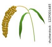 illustration of the millet   Shutterstock .eps vector #1229301685