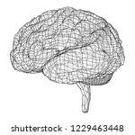 3d outline brain. vector... | Shutterstock .eps vector #1229463448