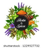 spices and herbs organic... | Shutterstock .eps vector #1229527732