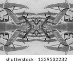 monochrome poolside chairs      ... | Shutterstock . vector #1229532232