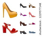 isolated object of footwear and ... | Shutterstock .eps vector #1229577148