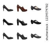 vector illustration of footwear ... | Shutterstock .eps vector #1229579782