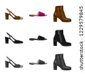 isolated object of footwear and ... | Shutterstock .eps vector #1229579845