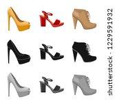 vector design of footwear and... | Shutterstock .eps vector #1229591932