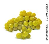 fresh  nutritious  tasty grapes.... | Shutterstock .eps vector #1229598565