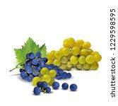 fresh  nutritious  tasty grapes.... | Shutterstock .eps vector #1229598595