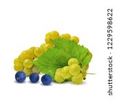 fresh  nutritious  tasty grapes.... | Shutterstock .eps vector #1229598622