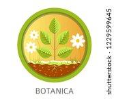 botanica school discipline ...   Shutterstock .eps vector #1229599645