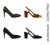 vector illustration of footwear ... | Shutterstock .eps vector #1229627962