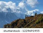mont blanc massif near chamonix ... | Shutterstock . vector #1229691955
