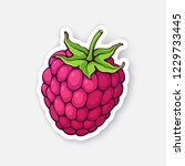 vector illustration. raspberry... | Shutterstock .eps vector #1229733445
