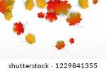 october vector background with... | Shutterstock .eps vector #1229841355