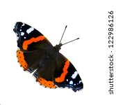 The Beautiful Red Admiral...