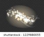 blurred glittering sparkling...   Shutterstock . vector #1229880055