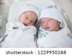newborn twins sleeping.newborn... | Shutterstock . vector #1229950288
