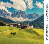 wonderful sunny landscape of... | Shutterstock . vector #1229950408