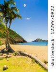 anse rodrigues  terre de haut ... | Shutterstock . vector #1229970922