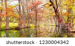 Fall Panorama Of Blue Hole Regional Park In Wimberley Hays County Texas Hill Country