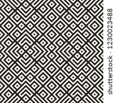 ethnic pattern vector design.... | Shutterstock .eps vector #1230023488