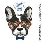 portrait of a bulldog in... | Shutterstock .eps vector #1230089932