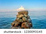 stones balance on beach ... | Shutterstock . vector #1230093145
