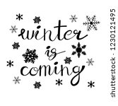 winter is coming. christmas...   Shutterstock .eps vector #1230121495