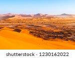 red dunes of namib desert near... | Shutterstock . vector #1230162022