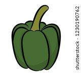 pepper  bell pepper or capsicum    Shutterstock .eps vector #1230190762
