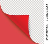 curled corner of paper with... | Shutterstock .eps vector #1230273655