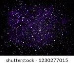 vector violet and purple... | Shutterstock .eps vector #1230277015