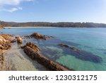 reef along the coastline of new ... | Shutterstock . vector #1230312175