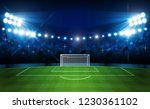 football arena field with... | Shutterstock .eps vector #1230361102
