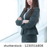 executive business woman...   Shutterstock . vector #1230516808